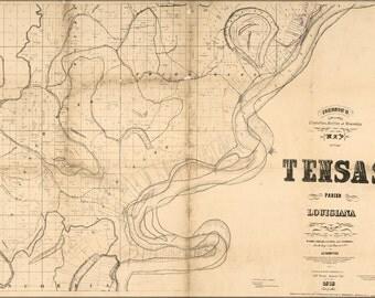16x24 Poster; Map Of Tensas Parish, Louisiana 1873