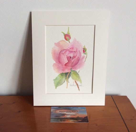 One Pink rose and buds