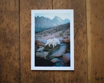 Colorado Postcards Pack of 50