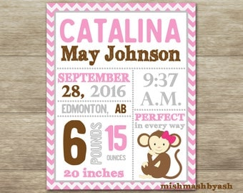 girl monkey birth stats monkey nursery decor girl monkey baby shower decorations girl. Interior Design Ideas. Home Design Ideas