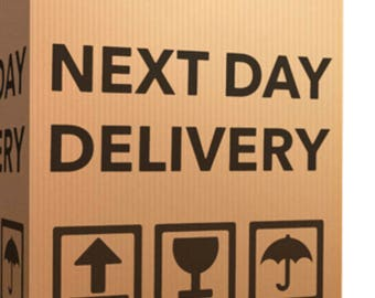 UPGRADE Next Day Shipping UPS - FEDEX