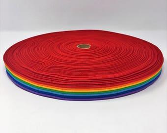 "7/8"" Wide Polypropylene Webbing One Yard Piece Rainbow"