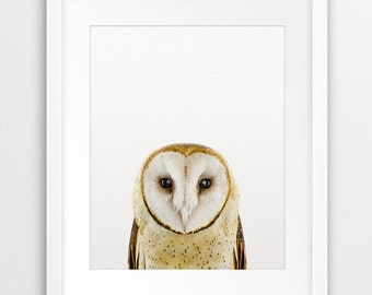 Owl Print, Woodlands Owl Photo, Woodland Nursery Decor, Woodlands Animal Print, Kids Room Wall Decor, Modern Wall Art, Digital Printable Art