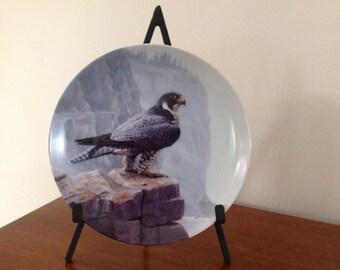 Peregrine Falcon Collectible Plate