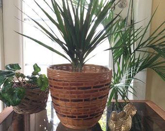 Woven Rattan Basket Planter, Boho , Asian Decor
