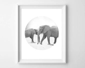 Baby Elephant Print - Baby Animals Wall Art - Safari Nursery Elephant Print - Black White Nursery Animal Print - Kids Room Decor
