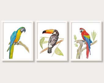 Parrots Tropical Print Set Bird Art Ara Macaw Toucan Tropical Decor Watercolor Paintings Bright Colorful Wall Art Nursery Animal Prints 3