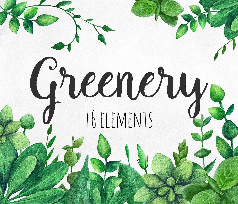 Greenery clip art green watercolor garden clipart summer for Watercolor greenery