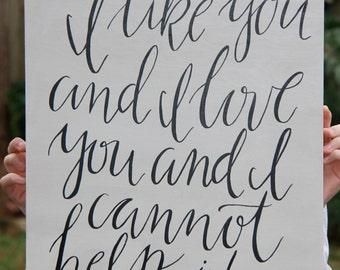 I Like You and I Love You and I Cannot Help It