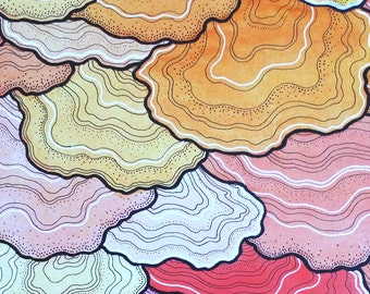 Fungi Succulent Gloss Print