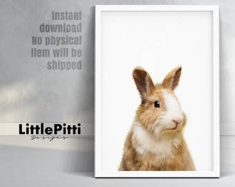 Rabbit print, bunny print, nursery wall art, nursery printable, nursery animal art, print nursery rabbit, baby animal prints, digital print