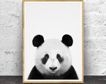 Panda Print, Nursery Decor, Nursery Wall Art, Nursery Animals, Nursery Printable, Nursery Animal Print, Black and White, Animal, Panda Photo