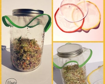 Sprouts - sprouts grid - Mason jar for filet counted green shoots, legumes, kefir and kombucha - zero waste