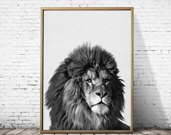 Lion print, Safari nursery, Wall decor, African lion print, Nursery decor, Art print, woodland nursery, safari nursery art, kids room art