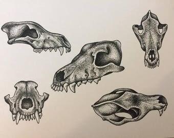 A4 Wolf Skulls Print