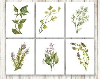 Herb Print Set, Herb Prints, Botanical Print, Botanical Print Set, Botanical Wall Art, Herb Print, Botanical Prints, Botanical Watercolor