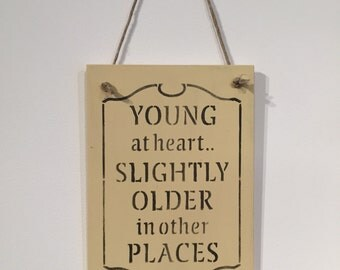 Slightly older plaque