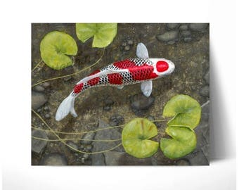 Original Painting koi Carp 16x20 inch acrylic on canvas