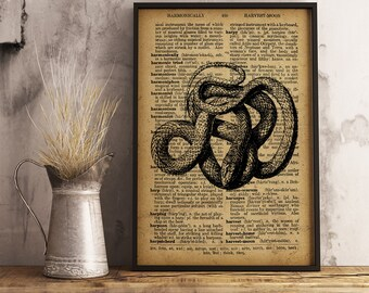 Snake Wall Art, Snake Print, Scientific art print, Herpetology Print, Gift for herpetologist, Snake vintage style art poster (RS10)