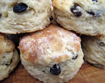 Raisin Biscuits, Southern Biscuits with Raisins, Homemade Biscuits, Large, 1 Dozen