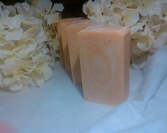 Juicy Apricot Soap Handmade Soap / Artisan Soap / JantasticSoaps