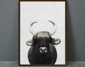 Bison Print, Indian Bison Wall Decor, Bison Poster, Indian Bison, Black and White Animal Print, Printable Black and White Indian Bison