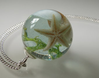 Pendant with MOSS, starfish and shells - a piece of sea