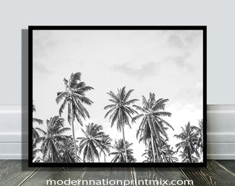 Palm Tree Print, Tropical Decor Wall Art, Beach Photo,Tropical Minimalist Print, California, Hawaii, Black and White, Grey, Tropical, Nature