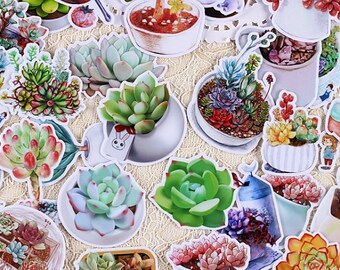 27 Pieces of Succulent Stickers - Planner/Journal/Scrapbooking