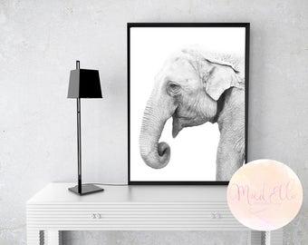 A4 DIGITAL Elephant Print
