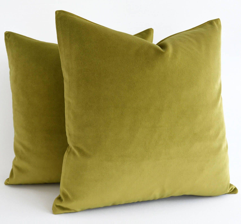 Any Size Sage green velvet throw pillow Euro sham velvet