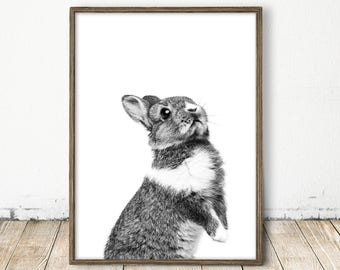 bunny print, bunny art, nursery bunny print, nursery bunny art, black and white bunny print, rabbit print, rabbit art, bw bunny wall art