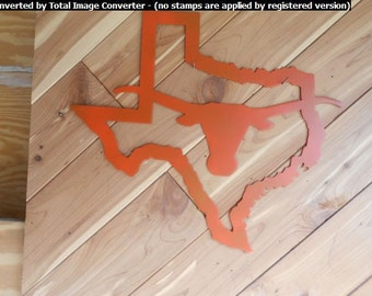 Texas Longhorn in Shape of Texas