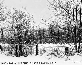 Field and snow/BNW