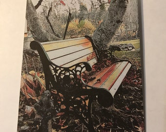 Homemade Greeting Card 5x7- Backyard Bench- Fall -Created from an original photograph