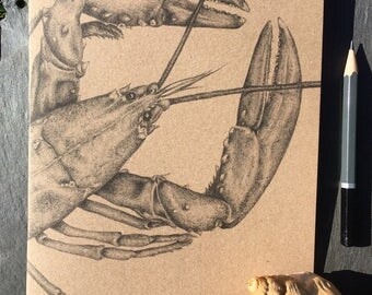 A5 kraft notebook lobster pencil drawing