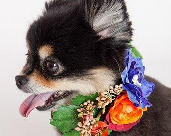 APRIL- Wedding Dog Collar, Dog Flower Crown, Floral Dog Collar, Spring Wedding, Boho Wedding, Bohemian Wedding, Dog Flower Girl, Pet Wreath