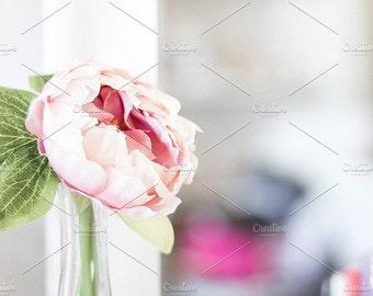 Styled Stock Photo | Single Flower In Vase | Blog stock photo, stock image, stock photography, blog photography
