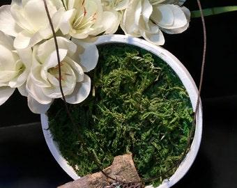 Collar lotus root