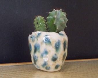 Pot pour succulente en céramique bleu et brun