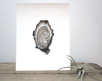 Oyster Watercolor Giclée Print