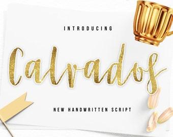 80% OFF SALE Font commercial use,Digital fonts,Christmas Font,Handwritten font,Calligraphy font,Script Font,Wedding font - Instant Download