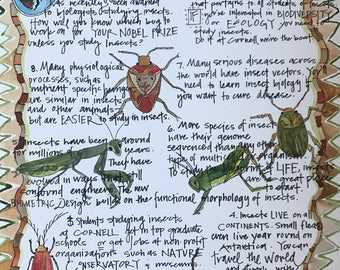 The Top Ten Reasons to Study Bugs