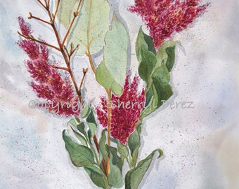 Dried Flowers Watercolor
