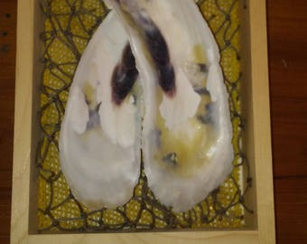 Twin Oyster Shell Decor