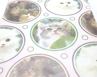 Vintage Kitten Photos Wrapping Paper Sealed Birthday Gift Wrap Made in the Canada Craft Supplies Scrapbook Supplies Kitty Cat