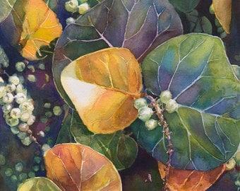 Sea Grapes Print of Original Watercolor Painting, Seagrapes, tropical, art, flora and fauna, Hawaii, Hawaiian, Bahamas, beach, Edie Fagan