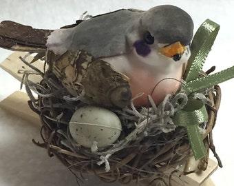 Birdclip (#004)