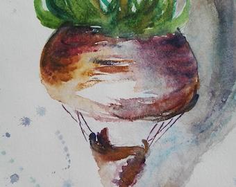 Ball turnip
