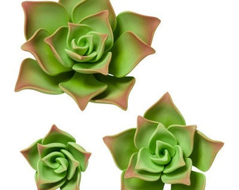 12 CT Succulent Cake Toppers/ Green Succulent Cake Topper/ Edible Succulents/ Succulent Cake Topper